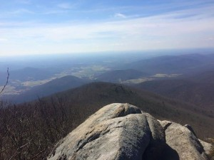 The view from Terrapin Rocks